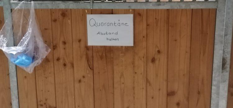 Quarantäne sollte der Standard sein
